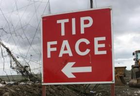 Tip face web