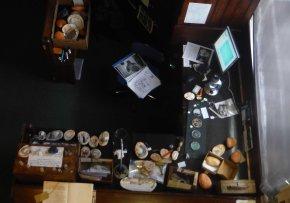 Exhib overhead small