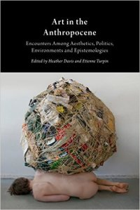 Art in the anthropocene Book cover