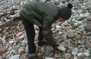 looking for rocks