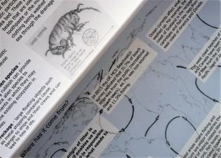 guide-sandhopper-map