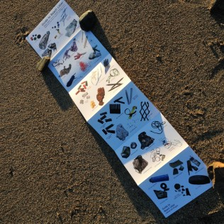 guide-to-beach-litter-image-2